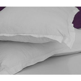 42x34-T200 White Standard Pillow Case - Thomaston