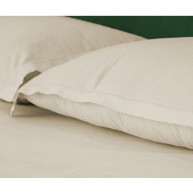 42x36-T180 Standard Bone Pillow Case - Thomaston