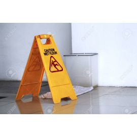 Warning Sign - Small Wet Floor